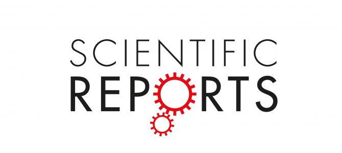 Международное сотрудничество и статья в журнале Scientific Reports (Nature)